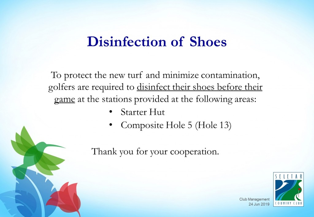 Disinfect shoes