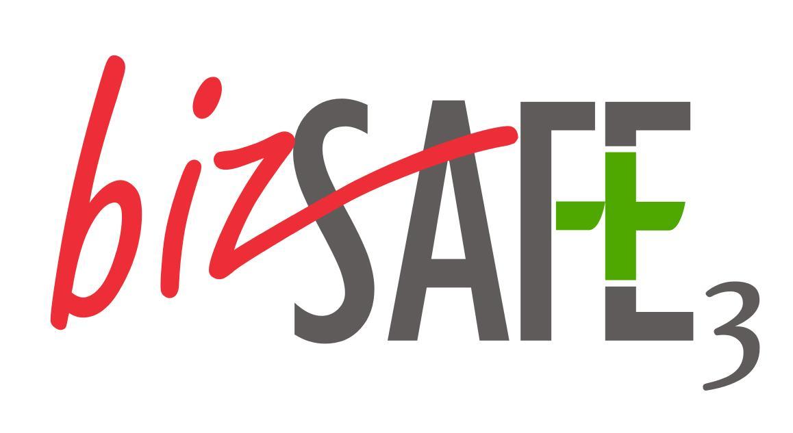 bizSAFE Enterprise Level 3